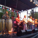 Camarillo Summer Concerts in the Park - Surf City Allstars